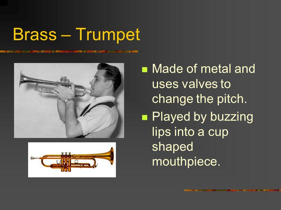 Woodwinds – Alto Saxophone Large case size.