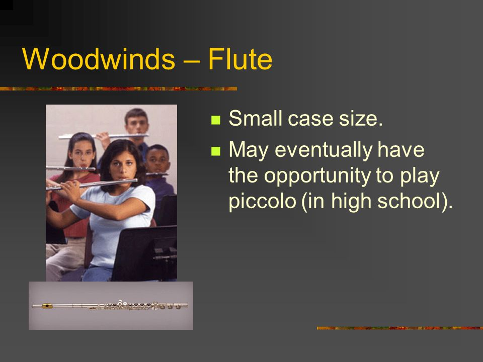 Woodwinds – Flute Small case size.