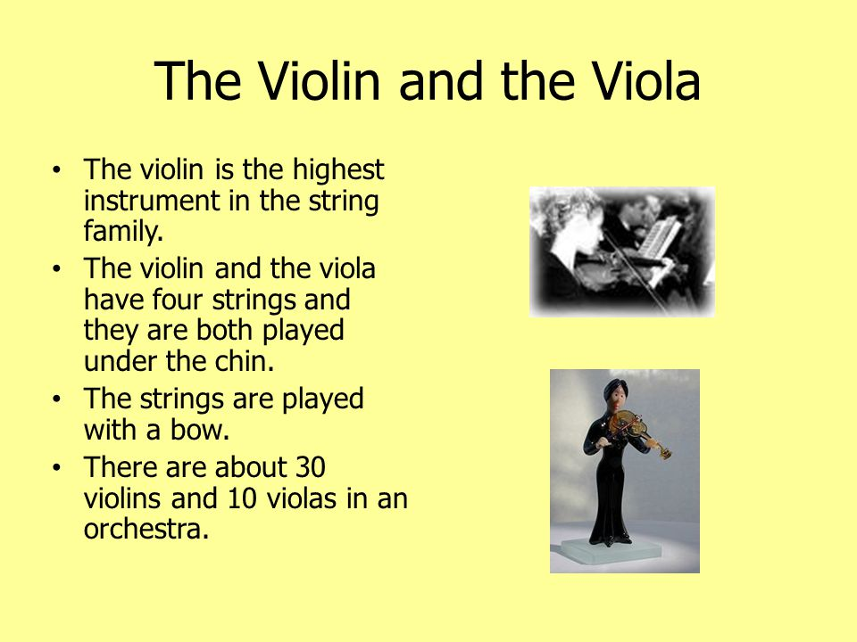 The Cello and the Double Bass The cello and the double bass are the two other main instruments in the string family.