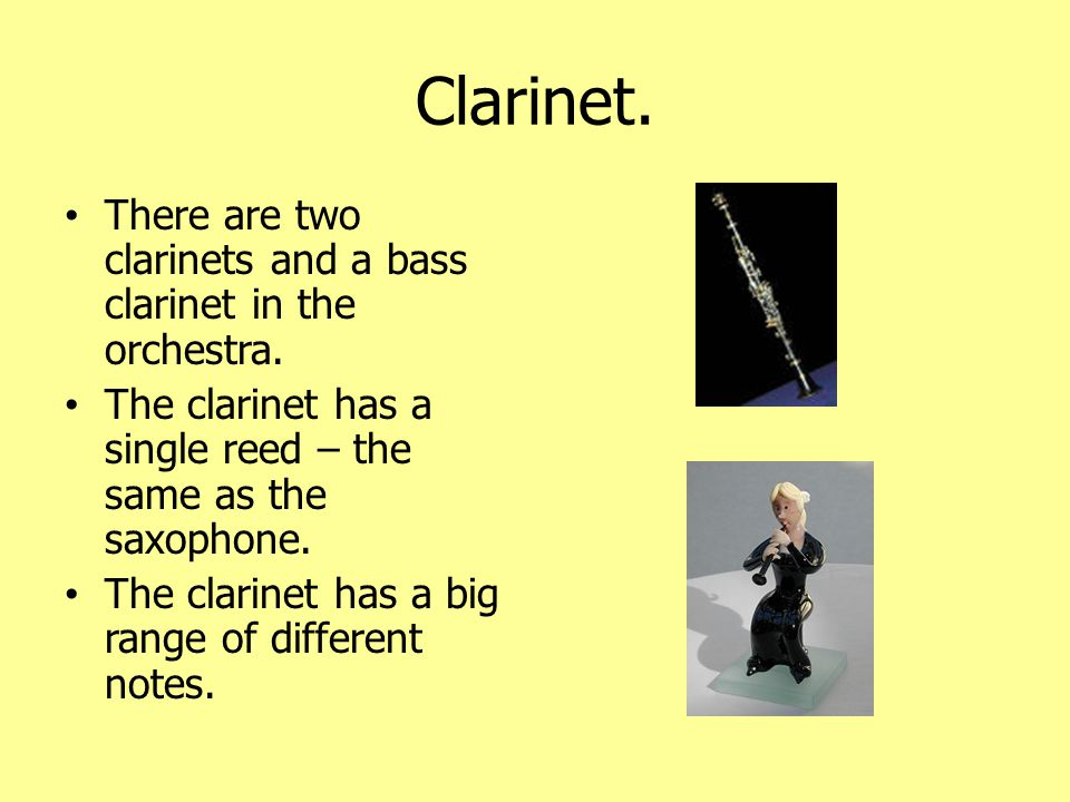 Bassoon The bassoon plays the lowest notes in the woodwind family.