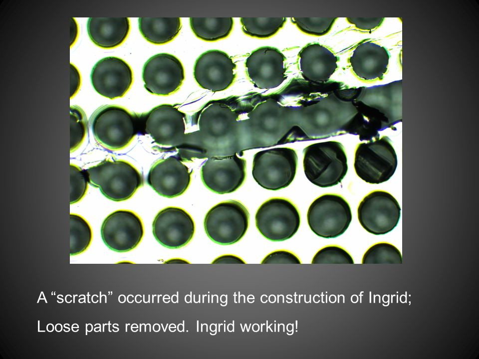 """A """"scratch"""" occurred during the construction of Ingrid; Loose parts removed. Ingrid working!"""