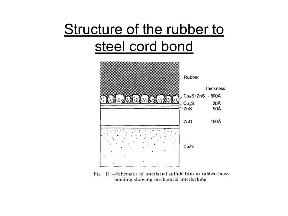 Structure of the rubber to steel cord bond