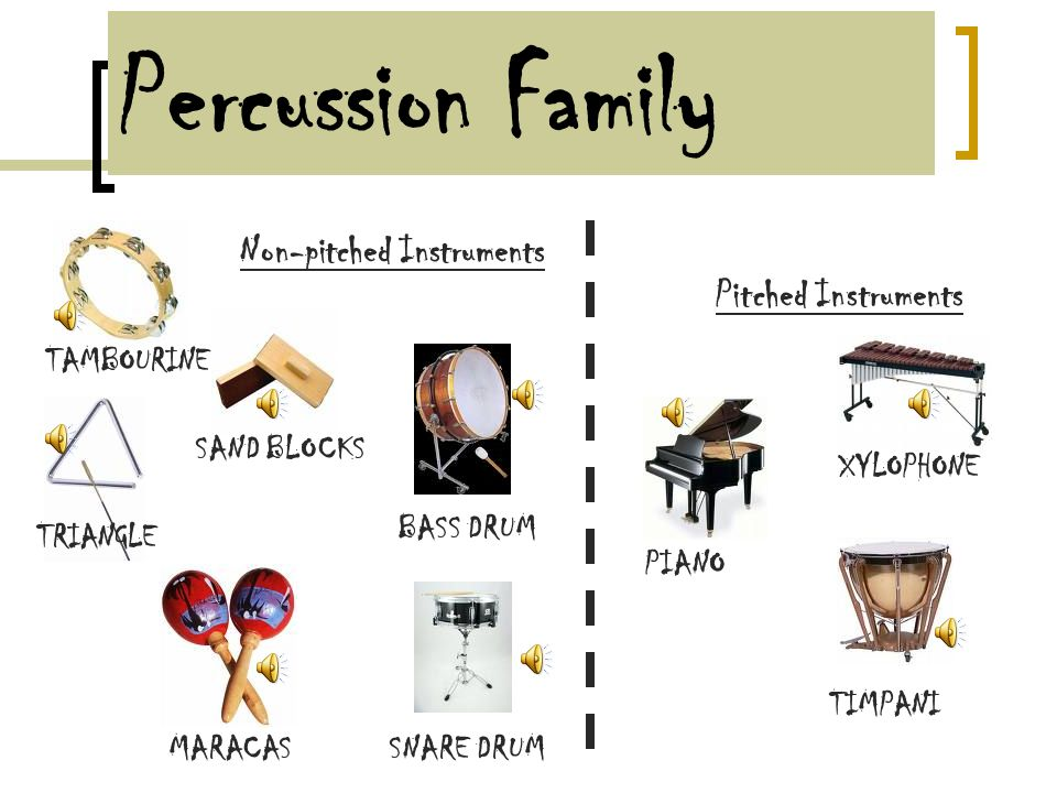 Percussion Family The Percussion family has the biggest variety of instruments.
