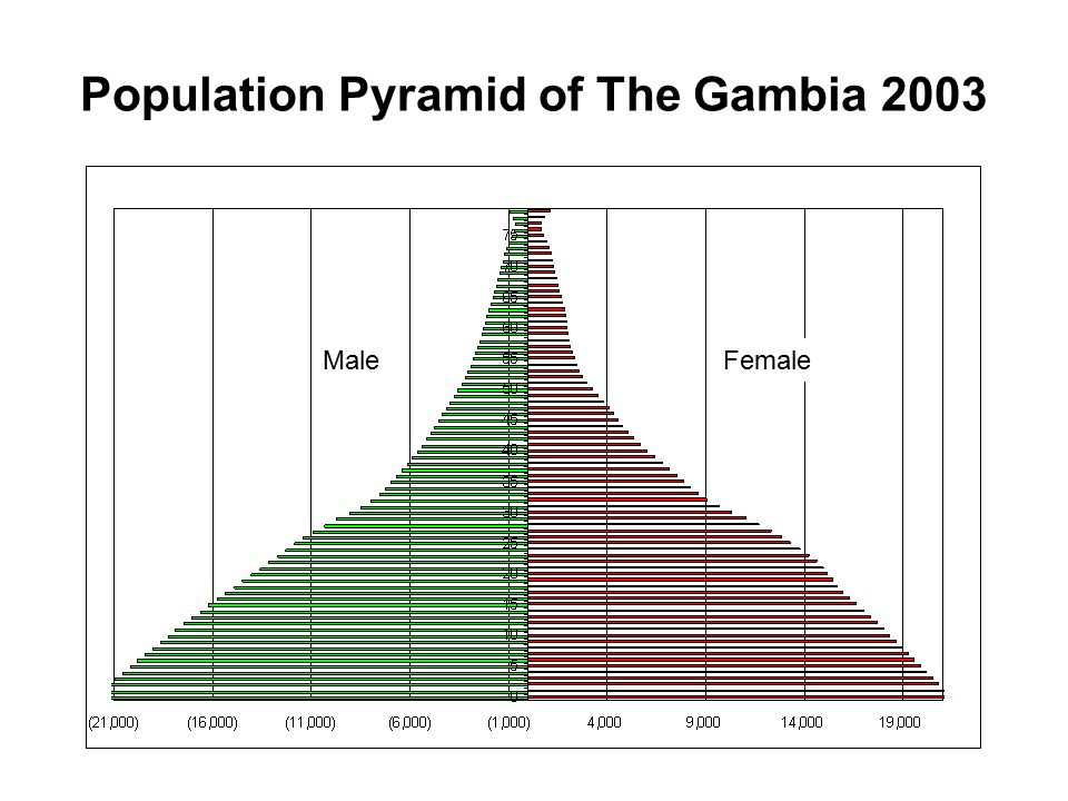 Population by Age and Sex, The Gambia, 2003