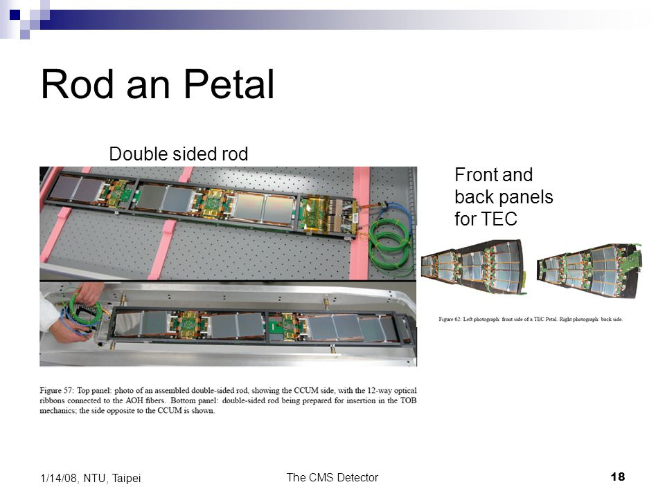 The CMS Detector18 1/14/08, NTU, Taipei Rod an Petal Double sided rod Front and back panels for TEC