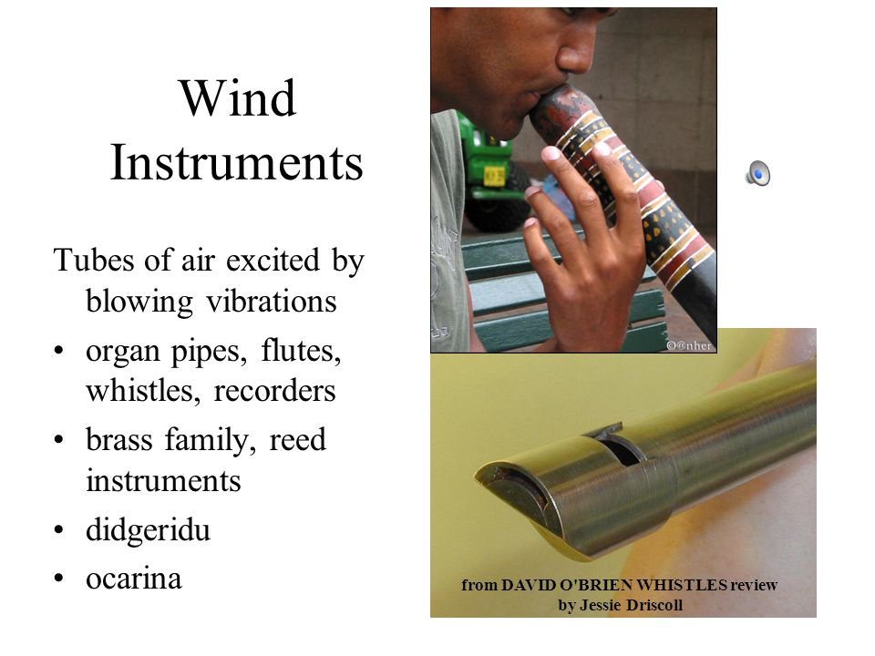 Wind Instruments Tubes of air excited by blowing vibrations organ pipes, flutes, whistles, recorders brass family, reed instruments didgeridu ocarina from DAVID O BRIEN WHISTLES review by Jessie Driscoll