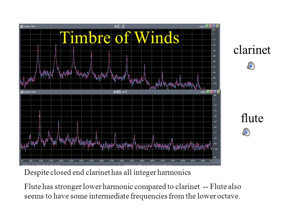 Timbre of Winds clarinet flute Despite closed end clarinet has all integer harmonics Flute has stronger lower harmonic compared to clarinet -- Flute also seems to have some intermediate frequencies from the lower octave.