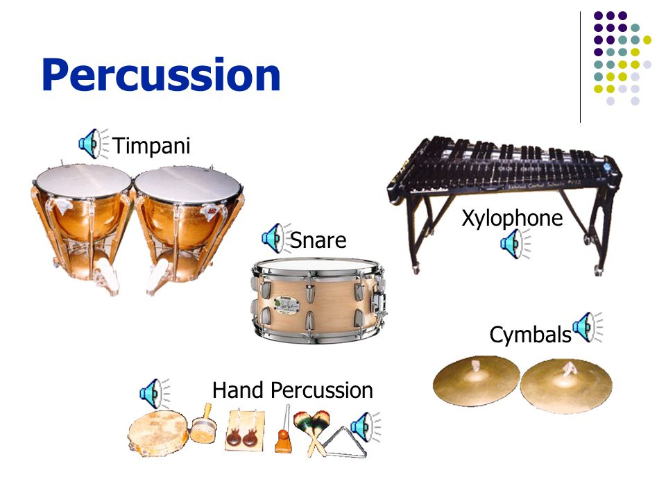 Cymbals Hand Percussion Timpani Xylophone Snare