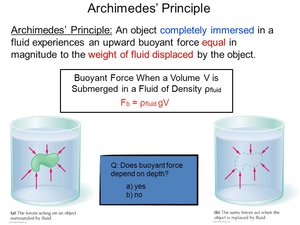 Buoyant Force When a Volume V is Submerged in a Fluid of Density ρ fluid F b = ρ fluid gV Archimedes' Principle Archimedes' Principle: An object completely immersed in a fluid experiences an upward buoyant force equal in magnitude to the weight of fluid displaced by the object.