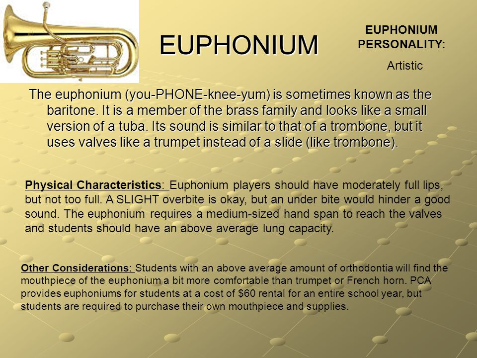 EUPHONIUM The euphonium (you-PHONE-knee-yum) is sometimes known as the baritone. It is a member of the brass family and looks like a small version of
