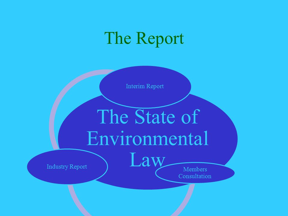 The Report The State of Environmenta l Law Interim Report Members Consultation Industry Report