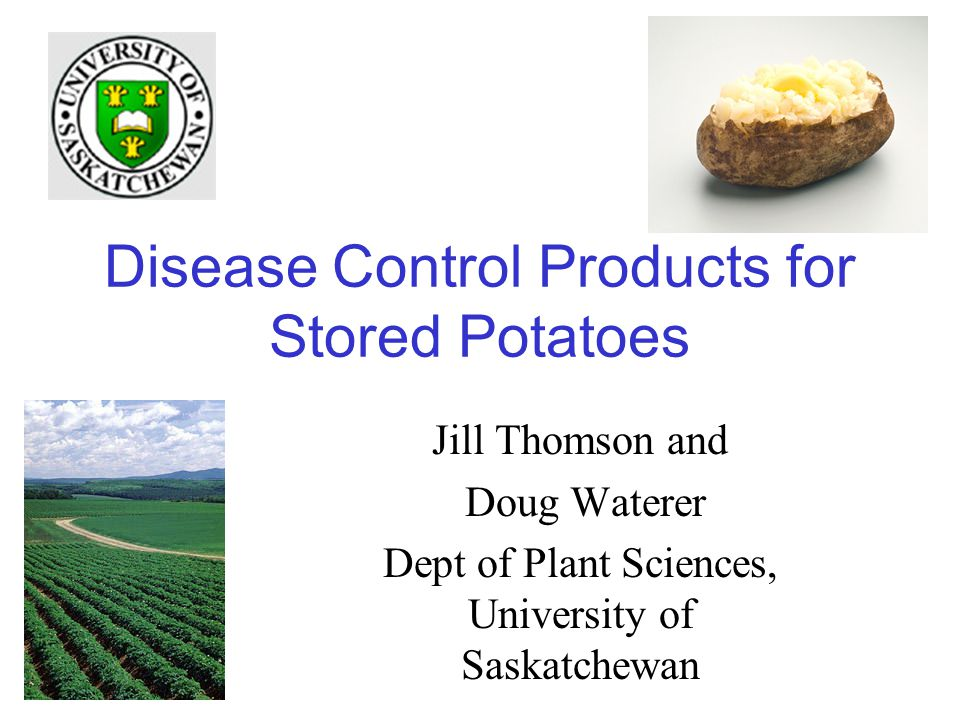 Disease Control Products for Stored Potatoes Jill Thomson and Doug Waterer Dept of Plant Sciences, University of Saskatchewan