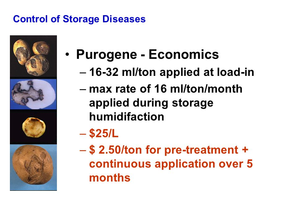 Control of Storage Diseases Purogene - Economics –16-32 ml/ton applied at load-in –max rate of 16 ml/ton/month applied during storage humidifaction –$