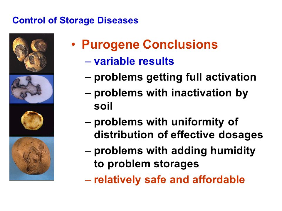 Control of Storage Diseases Purogene Conclusions –variable results –problems getting full activation –problems with inactivation by soil –problems wit