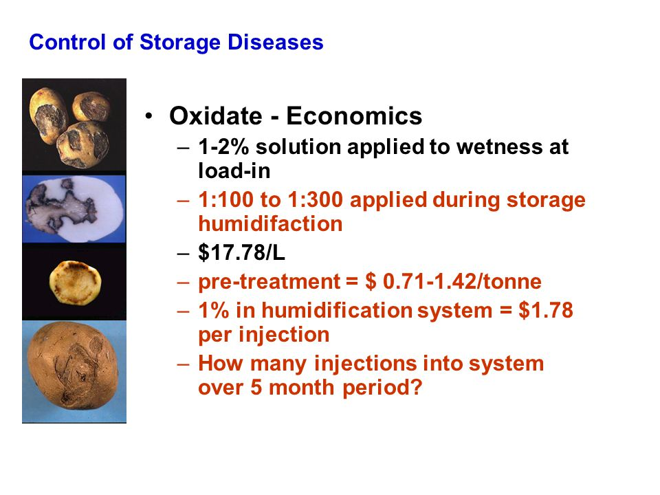Control of Storage Diseases Oxidate - Economics –1-2% solution applied to wetness at load-in –1:100 to 1:300 applied during storage humidifaction –$17.78/L –pre-treatment = $ 0.71-1.42/tonne –1% in humidification system = $1.78 per injection –How many injections into system over 5 month period?