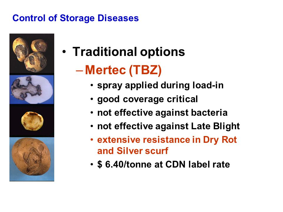 Control of Storage Diseases Traditional options –Mertec (TBZ) spray applied during load-in good coverage critical not effective against bacteria not e