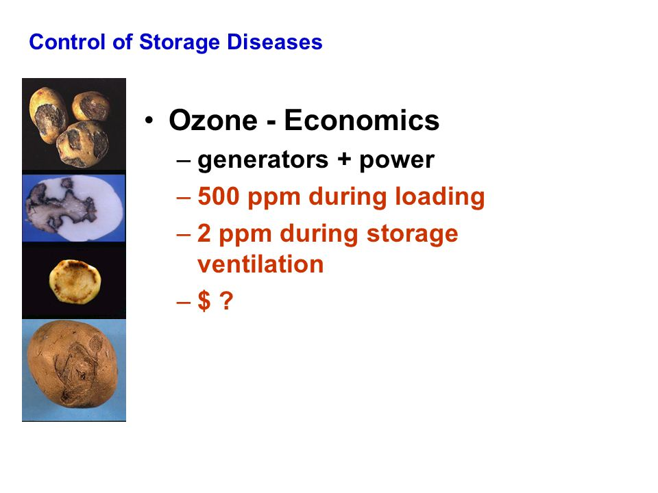 Control of Storage Diseases Ozone - Economics –generators + power –500 ppm during loading –2 ppm during storage ventilation –$ ?