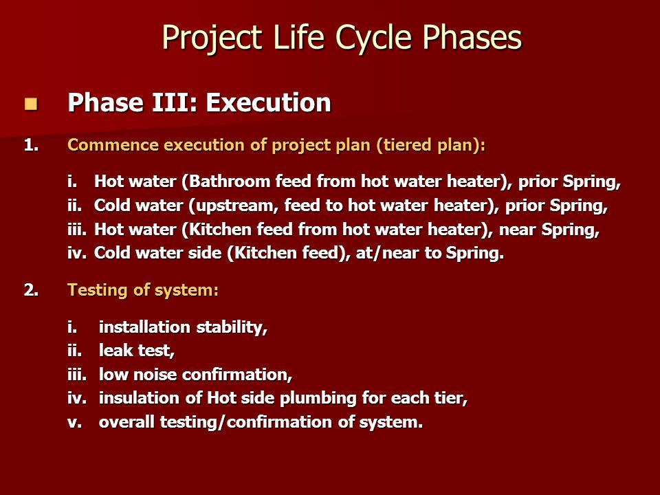 Project Life Cycle Phases Project Life Cycle Phases Phase III: Execution Phase III: Execution 1.