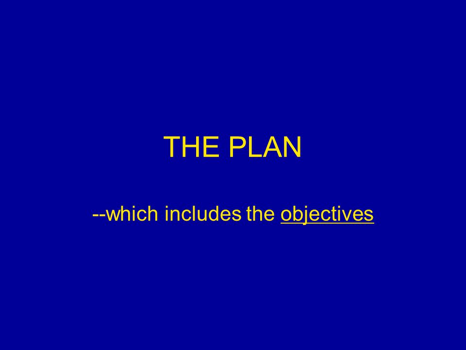 THE PLAN --which includes the objectives