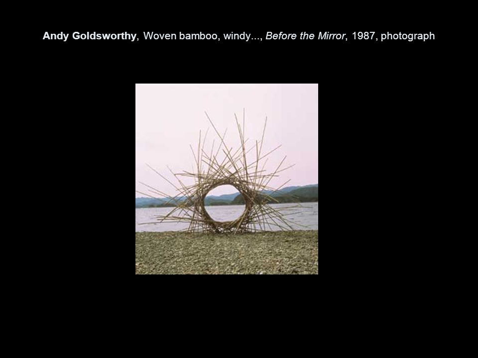 Andy Goldsworthy, Woven bamboo, windy..., Before the Mirror, 1987, photograph
