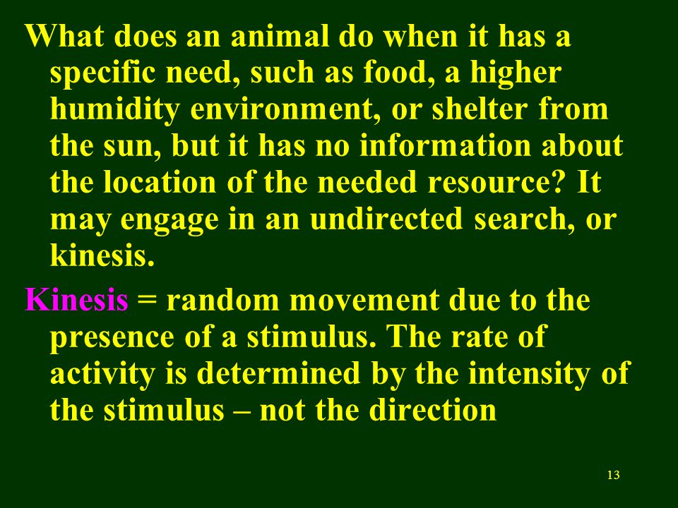 13 What does an animal do when it has a specific need, such as food, a higher humidity environment, or shelter from the sun, but it has no information about the location of the needed resource.