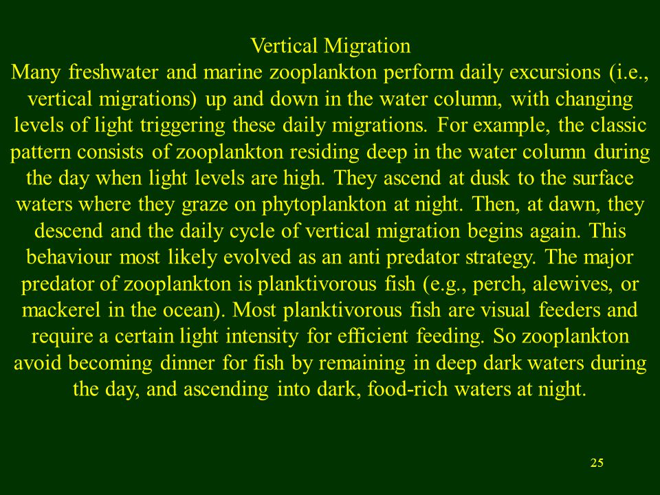 25 Vertical Migration Many freshwater and marine zooplankton perform daily excursions (i.e., vertical migrations) up and down in the water column, wit