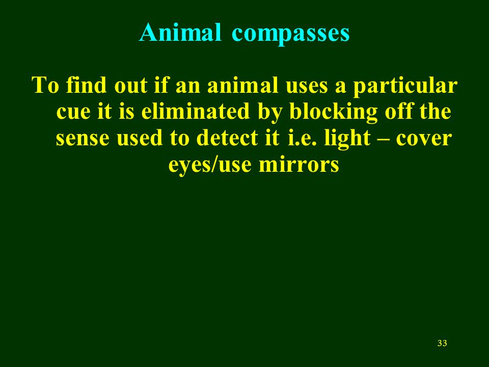 33 Animal compasses To find out if an animal uses a particular cue it is eliminated by blocking off the sense used to detect it i.e.