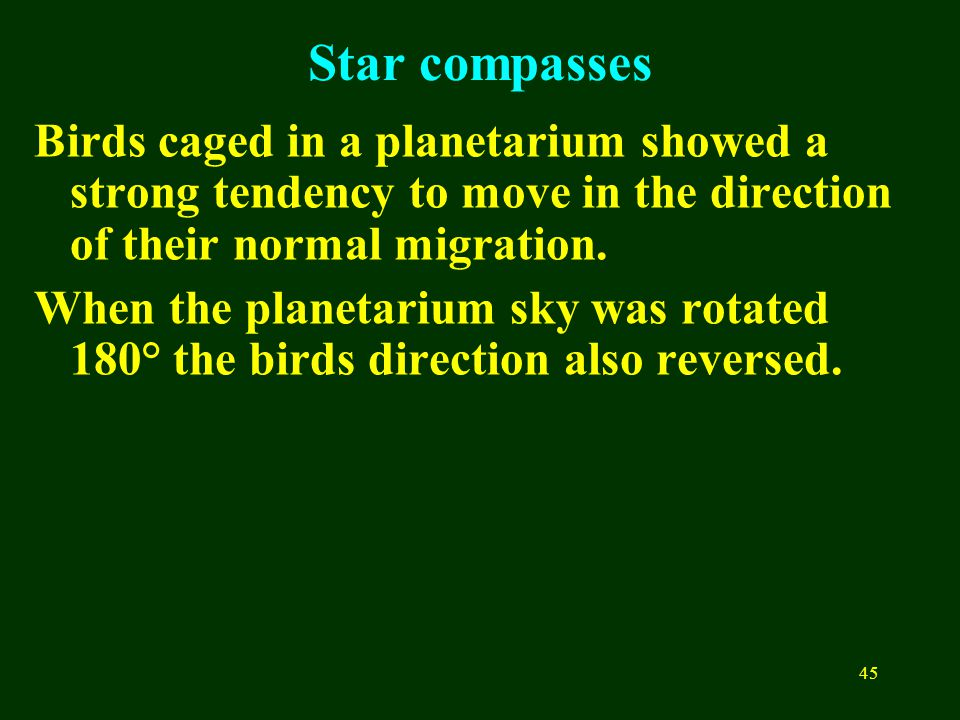 45 Star compasses Birds caged in a planetarium showed a strong tendency to move in the direction of their normal migration. When the planetarium sky w