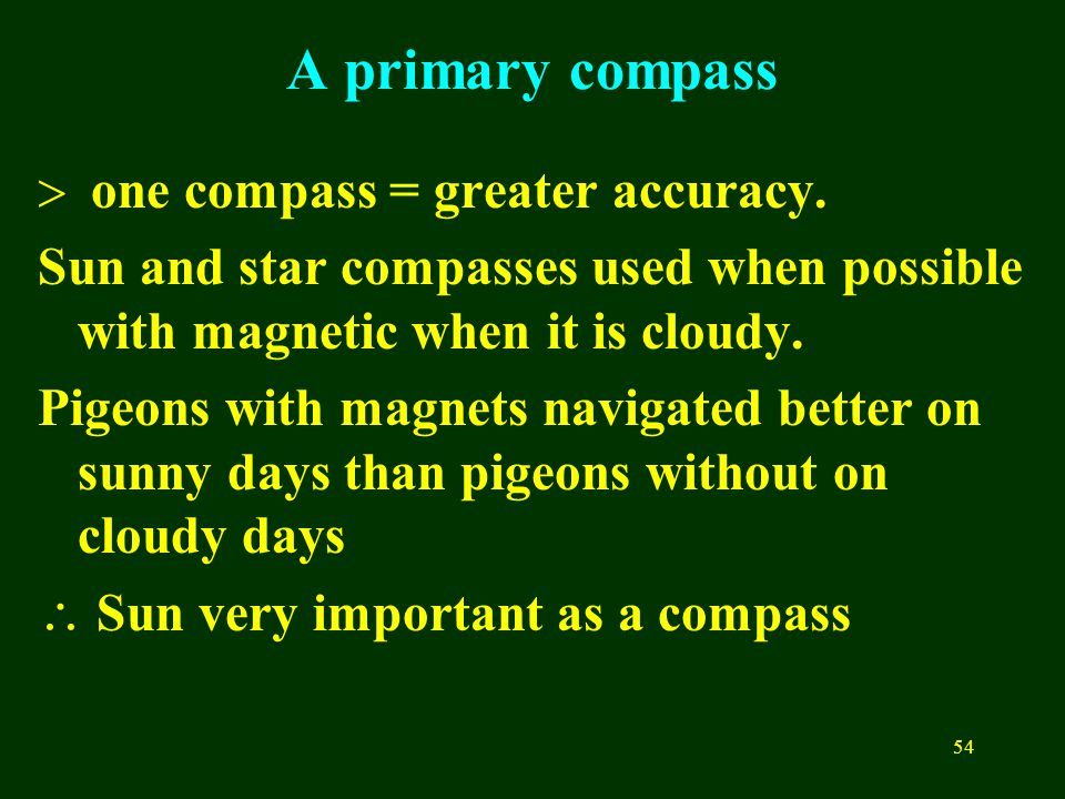 54 A primary compass  one compass = greater accuracy. Sun and star compasses used when possible with magnetic when it is cloudy. Pigeons with magnets