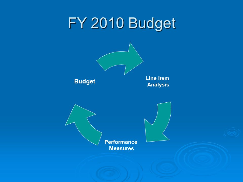 FY 2010 Budget Line Item Analysis Performance Measures Budget