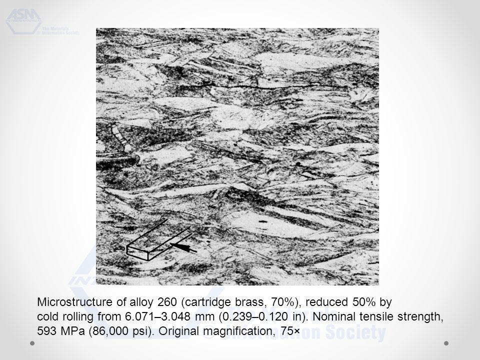 Microstructure of alloy 260 (cartridge brass, 70%), reduced 50% by cold rolling from 6.071–3.048 mm (0.239–0.120 in).