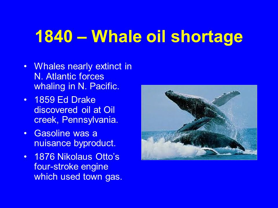 1840 – Whale oil shortage Whales nearly extinct in N. Atlantic forces whaling in N. Pacific. 1859 Ed Drake discovered oil at Oil creek, Pennsylvania.
