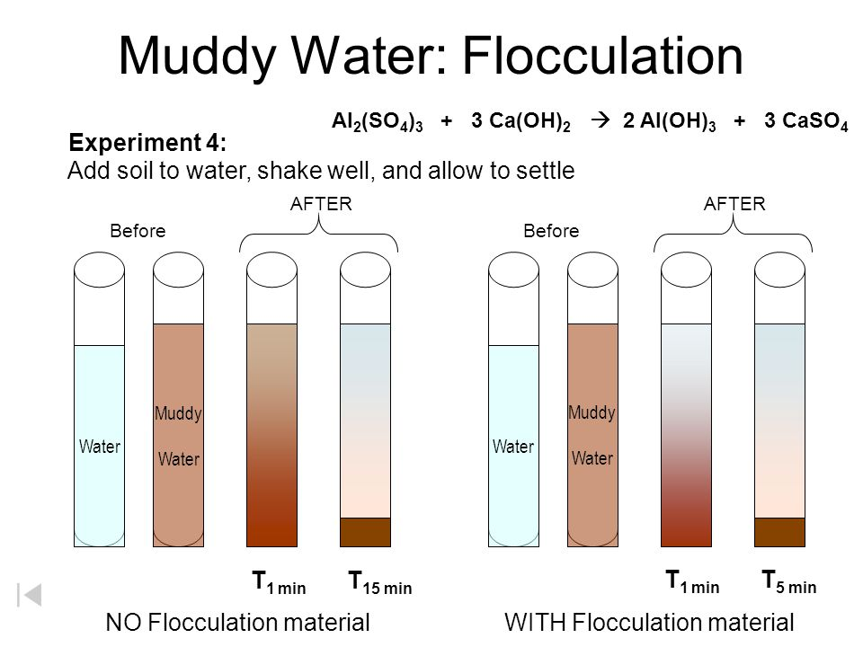 Muddy Water: Dissolved Solids Muddy Water T 1 min T 5 min AFTER Water Before Add soil to water, shake well, and allow to settle Experiment 3: Dissolve