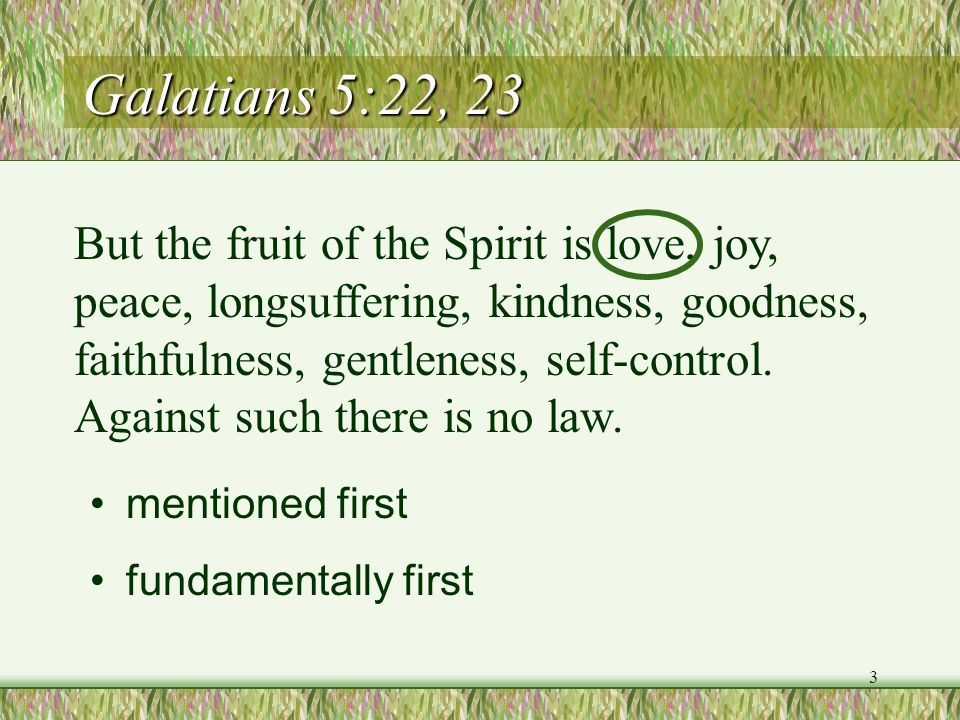 Galatians 5:22, 23 But the fruit of the Spirit is love, joy, peace, longsuffering, kindness, goodness, faithfulness, gentleness, self-control. Against