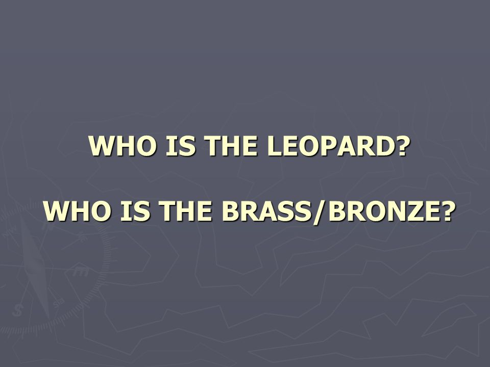 WHO IS THE LEOPARD WHO IS THE BRASS/BRONZE