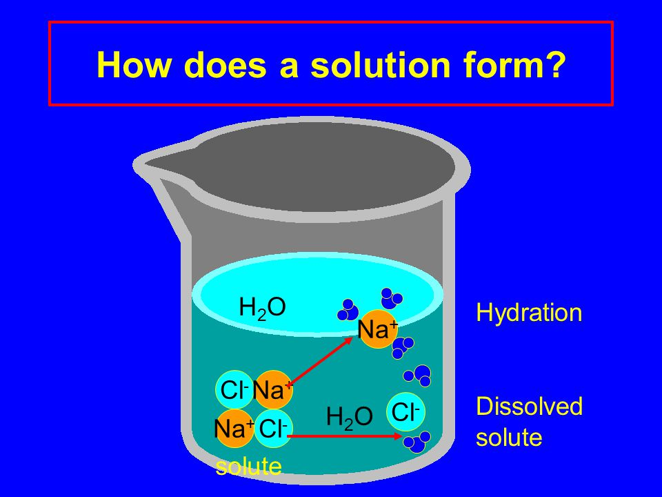 How does a solution form? Cl - Na + Cl - Na + H2OH2O H2OH2O Cl - solute Dissolved solute Hydration