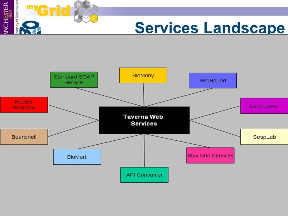 21 Services Landscape