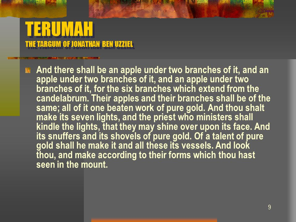 9 TERUMAH THE TARGUM OF JONATHAN BEN UZZIEL And there shall be an apple under two branches of it, and an apple under two branches of it, and an apple
