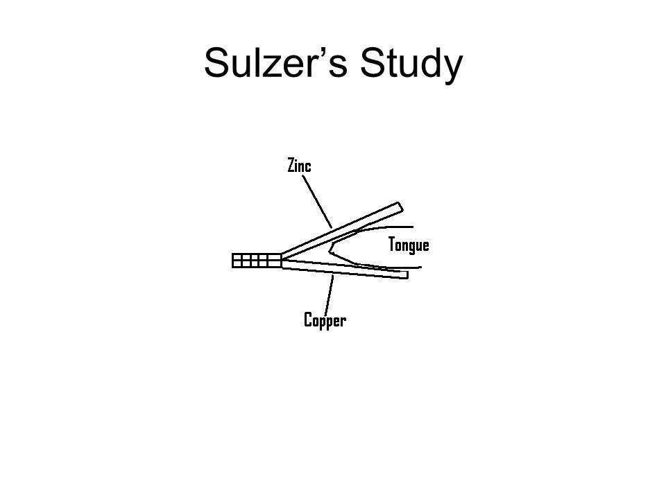 Sulzer's Study