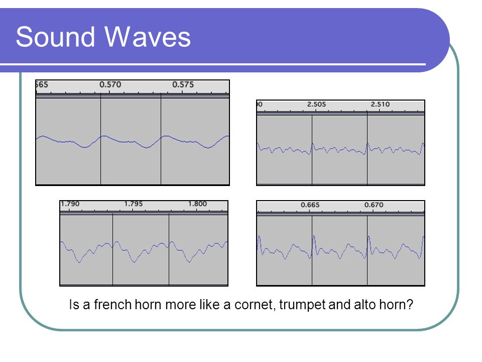 Sound Waves Is a french horn more like a cornet, trumpet and alto horn?