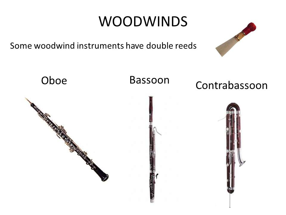WOODWINDS Some woodwind instruments have double reeds Oboe Bassoon Contrabassoon