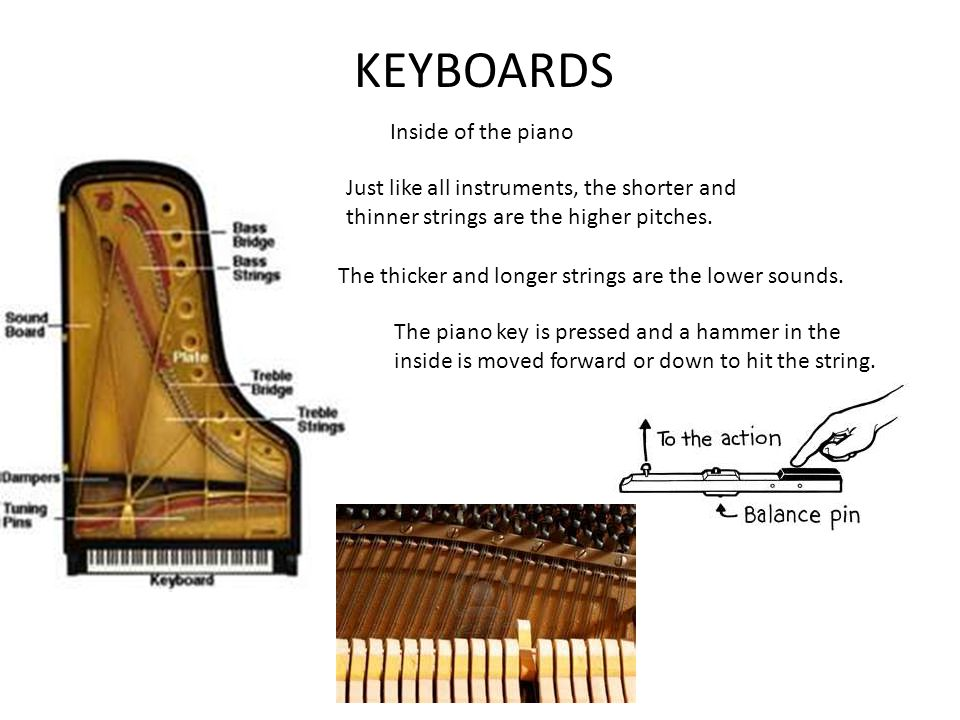 KEYBOARDS Inside of the piano Just like all instruments, the shorter and thinner strings are the higher pitches.