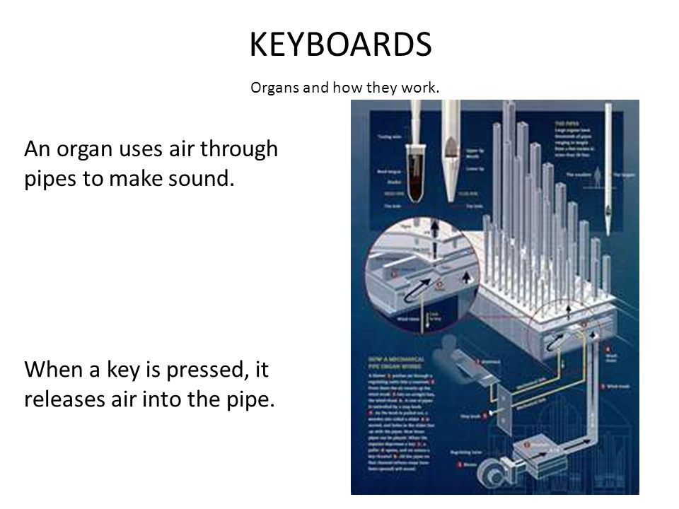 KEYBOARDS Organs and how they work. An organ uses air through pipes to make sound.