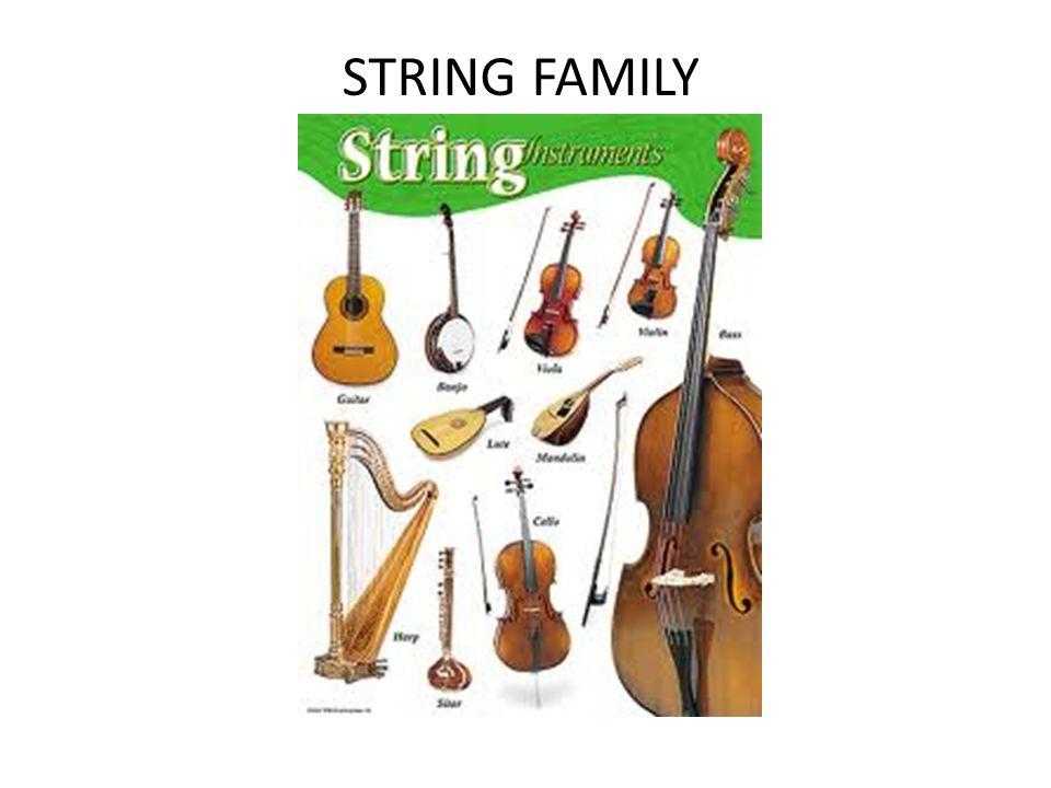 STRING FAMILY