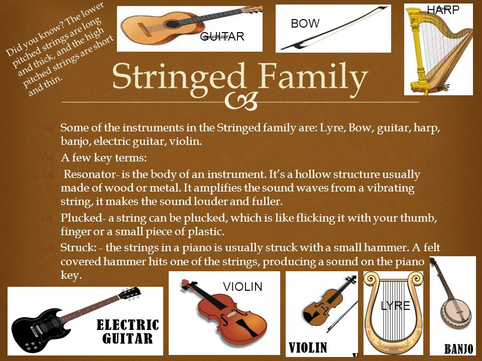   Some of the instruments in the Stringed family are: Lyre, Bow, guitar, harp, banjo, electric guitar, violin.  A few key terms:  Resonator- is th