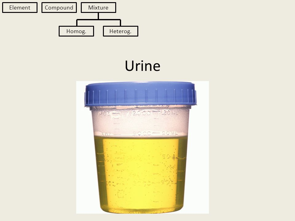 Urine Element Compound Mixture Homog.Heterog.