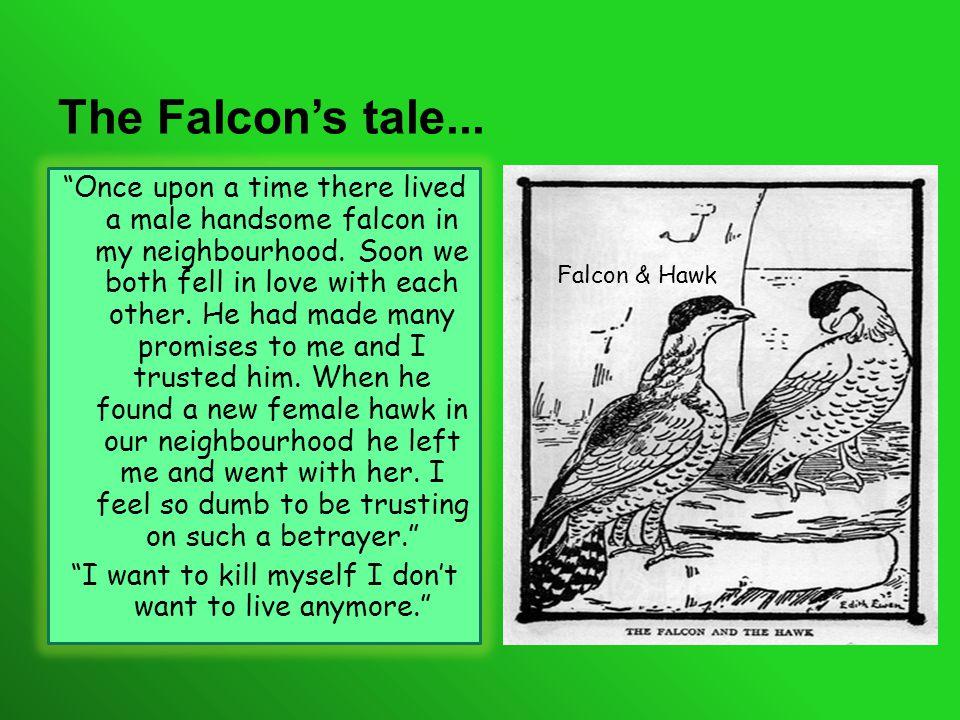 T HE F ALCON...