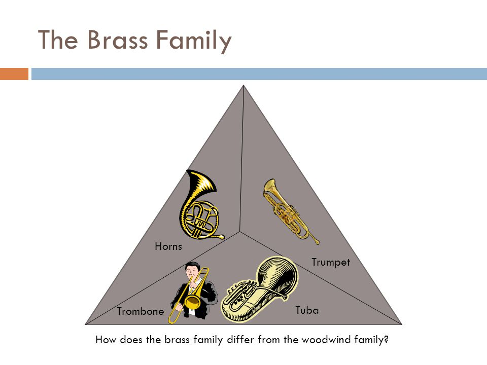 The Brass Family How does the brass family differ from the woodwind family? Horns Trombone Tuba Trumpet