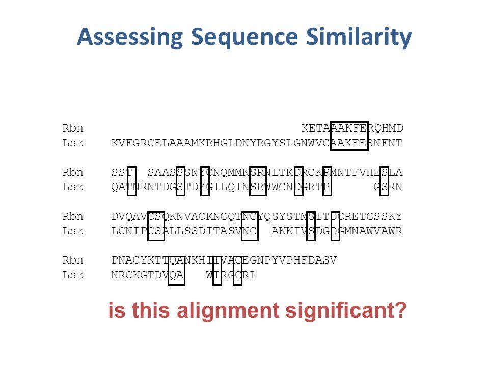 Assessing Sequence Similarity Rbn KETAAAKFERQHMD LszKVFGRCELAAAMKRHGLDNYRGYSLGNWVCAAKFESNFNT RbnSST SAASSSNYCNQMMKSRNLTKDRCKPMNTFVHESLA LszQATNRNTDGSTDYGILQINSRWWCNDGRTP GSRN RbnDVQAVCSQKNVACKNGQTNCYQSYSTMSITDCRETGSSKY LszLCNIPCSALLSSDITASVNC AKKIVSDGDGMNAWVAWR RbnPNACYKTTQANKHIIVACEGNPYVPHFDASV LszNRCKGTDVQA WIRGCRL is this alignment significant?