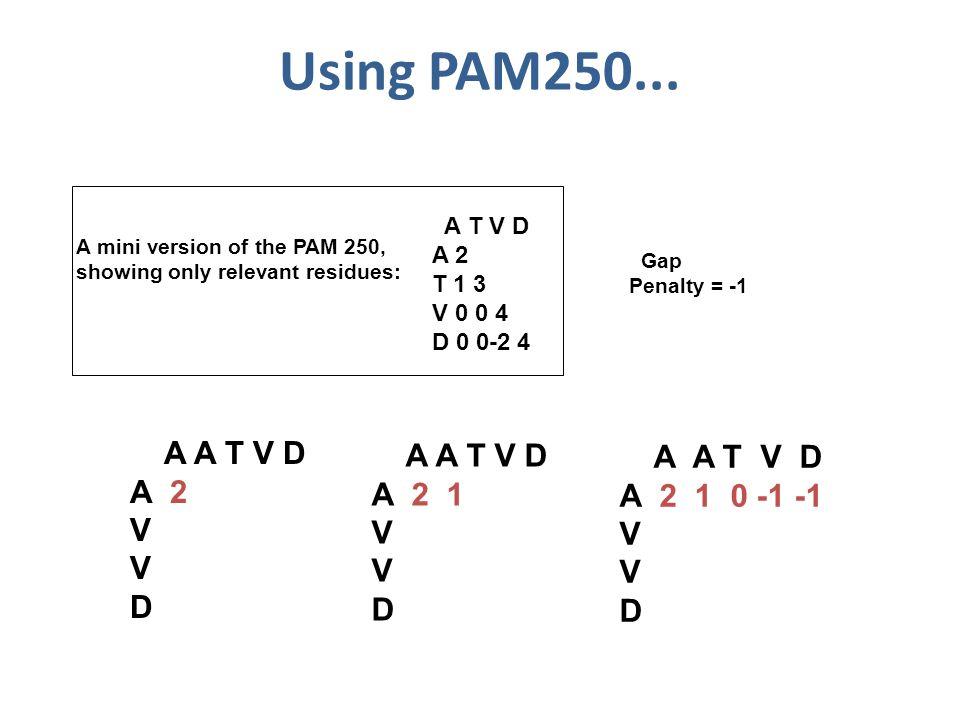 Using PAM250...